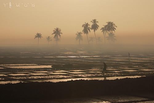 division bangladesh chittagong teknaf