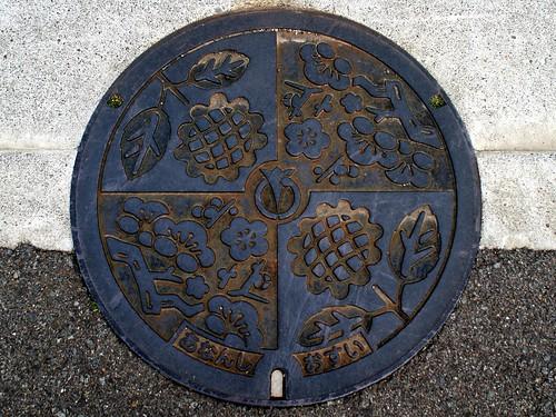 Anan city Tokushima pref, manhole cover (徳島県阿南市のマンホール)