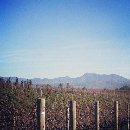 Paul Hobbs Winery Crossbarn Sonoma
