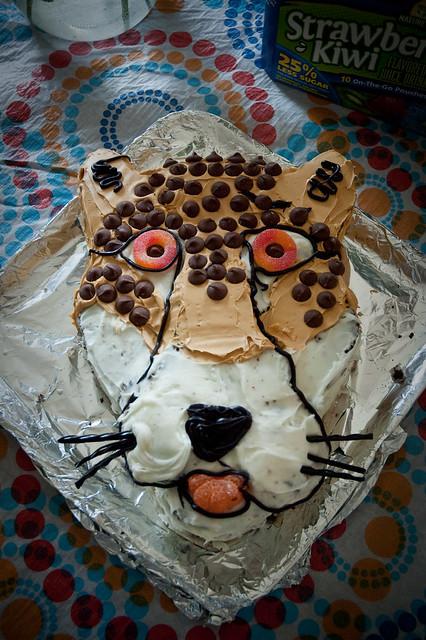 Cheetah Party Food Ideas
