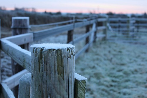 wood winter cold sunrise fence frost post