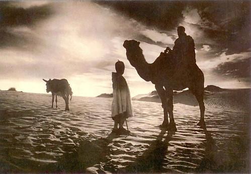 摩洛哥明信片-黑白