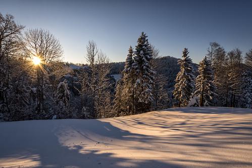 morning schnee winter light sun snow sunrise schweiz switzerland licht nikon day suisse dream pass stgallen sonne sonnenaufgang märchen traum zauber hulftegg d800e pwwinter
