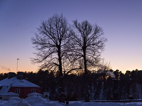 trees winter sky finland sundown january porvoo 2013 canoneos7d adobelightroom4 me2youphotographylevel1