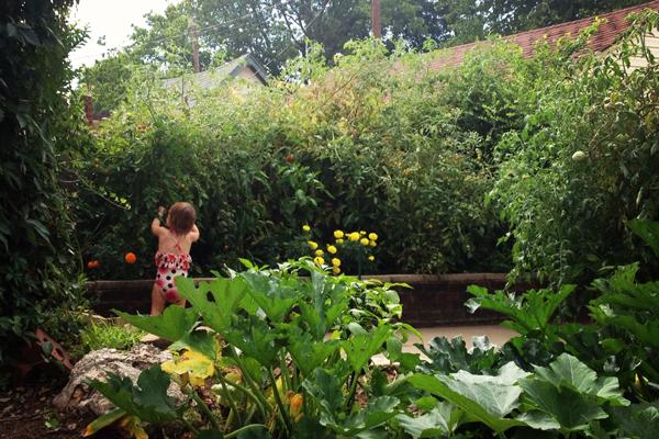 zellers city garden