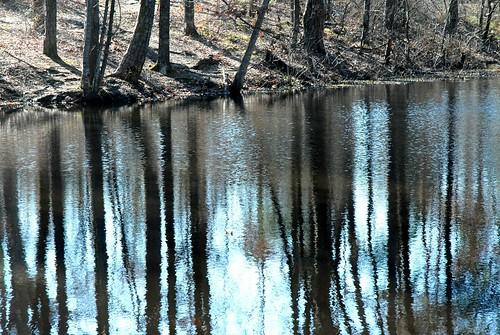 Brim Pond