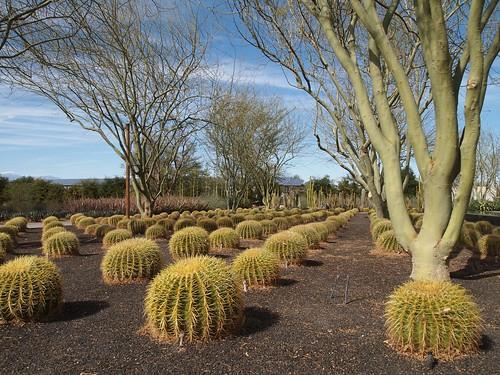Sunnylands Center & Gardens, Rancho Mirage, CA - 05