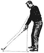 Taller posture