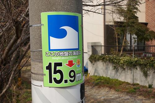 DSC08311