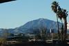 A look towards Mount Diablo from within the Antioch/Oakley Regional Park.