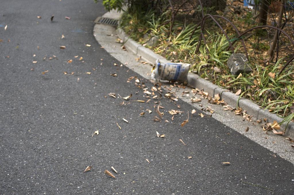 飛び散る枯葉と袋