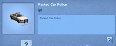 Parked Car Police