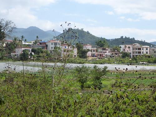 Hainan13-Wuzhishan-Montagne (116)