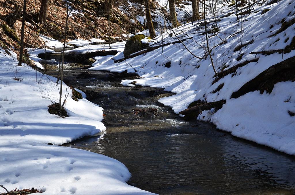 Mill Pond Trail, Walpole, NH
