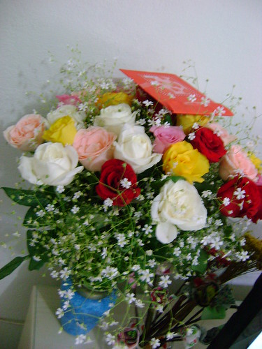 Minhas rosas niver 10-03 by Paninh♥s em forma de am♥r