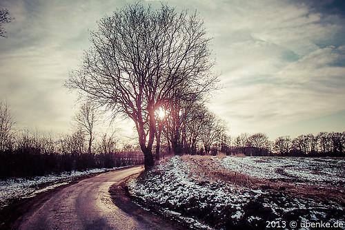 _sun by l--o-o--kin thru
