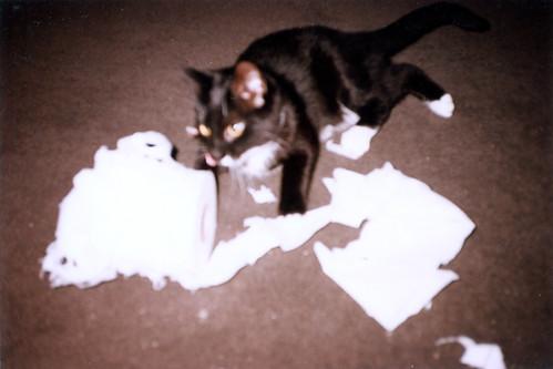 Inari 1995