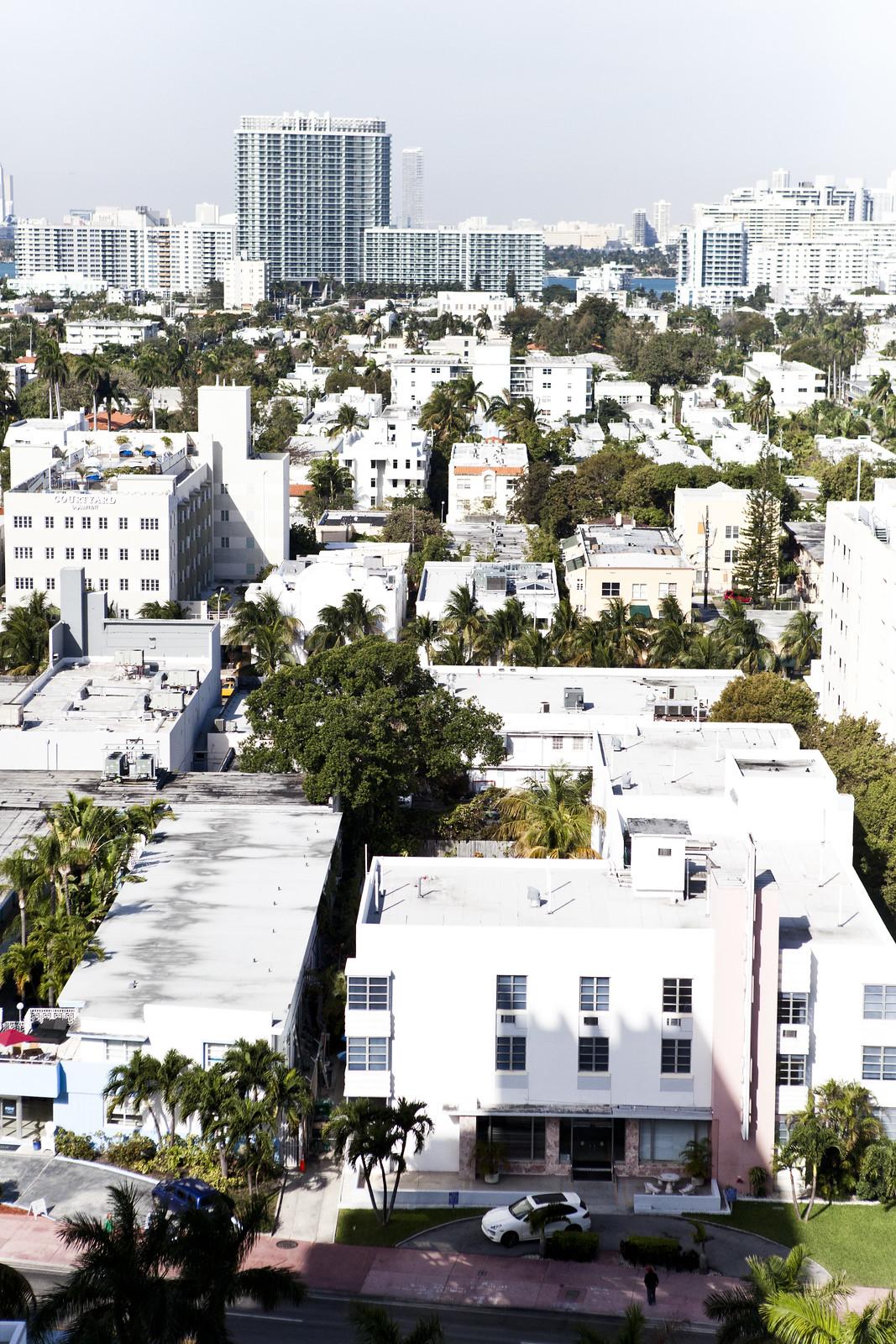 Miami | Nicole Franzen