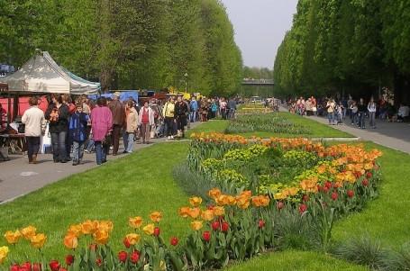 V Olomouci startují kondiční běžecké testy