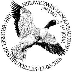 10 Cachet Zwin New