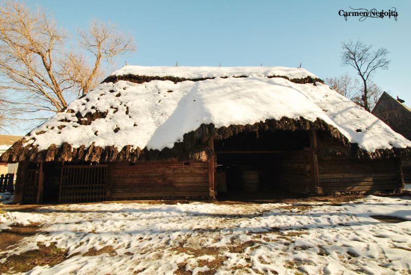 Bucuresti_Muzeul Satului_43