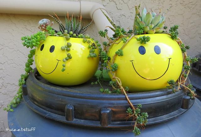 Rastafarian happy face planters