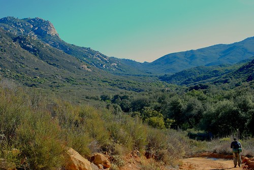 mountains pine creek forest san cleveland diego national backpacking wilderness