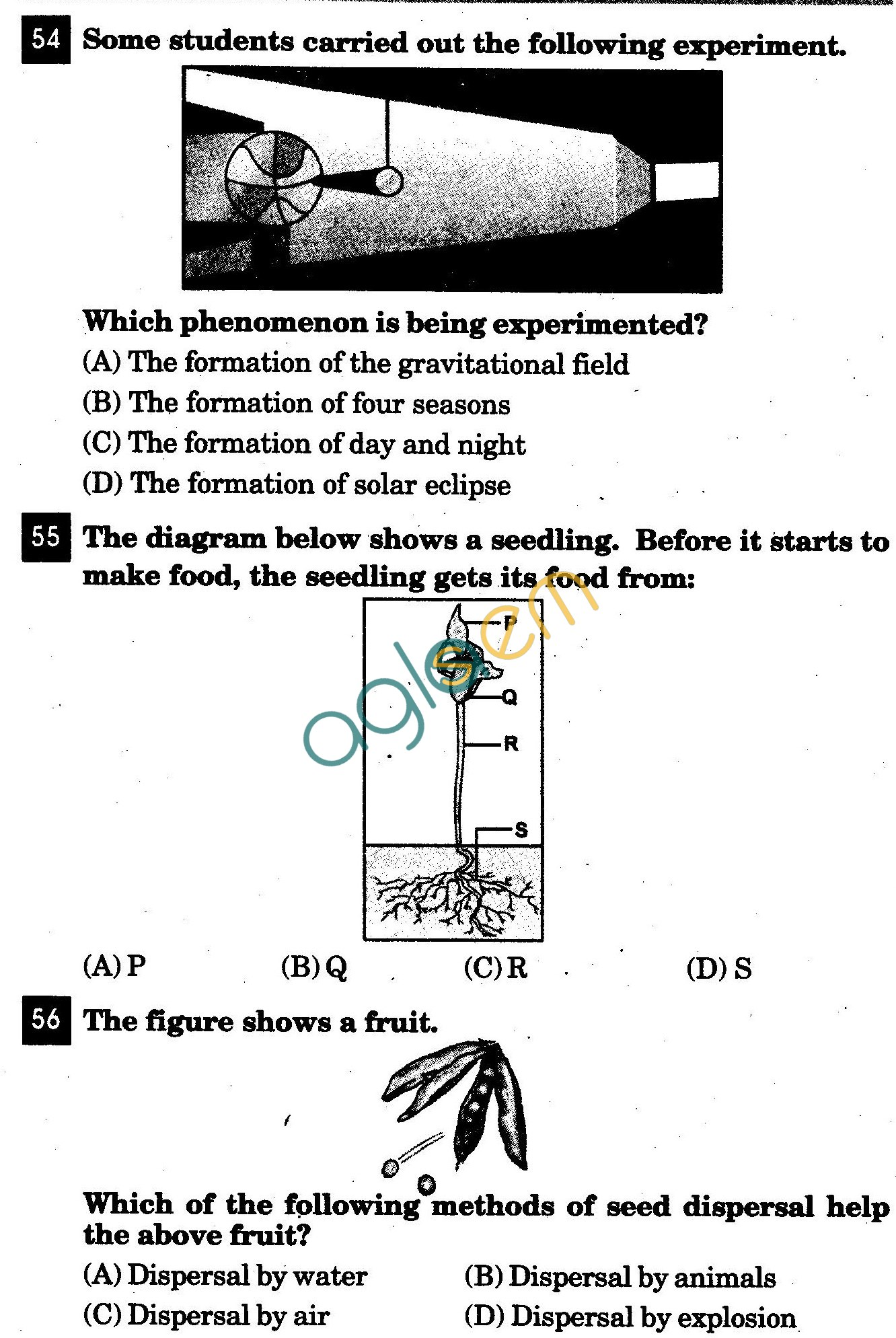 NSTSE 2011 Class V Question Paper with Answers - Science