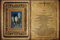 Evangelio según San Lucas 2,22-40.    Sábado 02 Febrero 2013