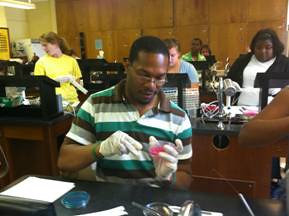 "Student Rashad Warren doing the lab work to find ""science gold"" in the bellies of beetles. Photo credit: Ellen Green"