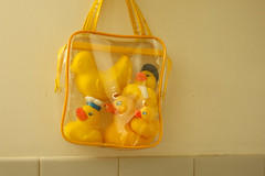 Rubber Duckies to Go