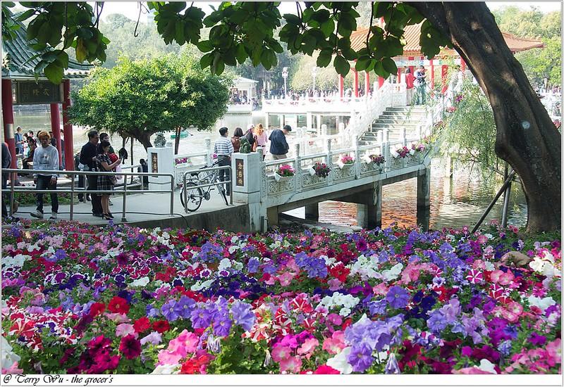 2013-02-12 是賞花還是賞人頭的中山公園百花祭