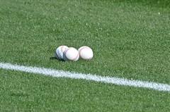 football player(0.0), ball(0.0), kick(0.0), player(0.0), football(0.0), net(0.0), flooring(0.0), grass(1.0), sports(1.0), artificial turf(1.0), baseball field(1.0), green(1.0), meadow(1.0), ball game(1.0), lawn(1.0), ball(1.0),