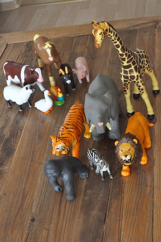 Zoo or farm animal