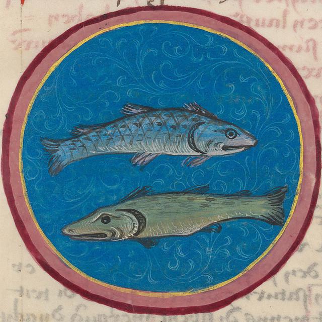 Zodiac sign of PISCES in a 15th century manuscript