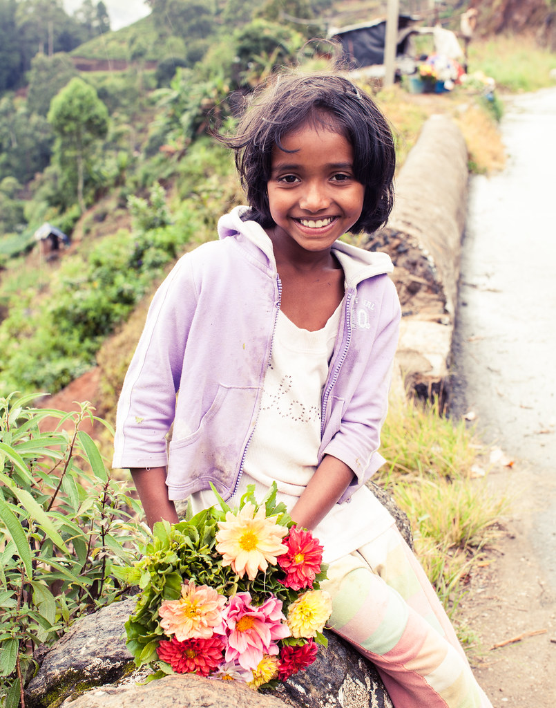 Young Sri Lankan Girl - Tea Country