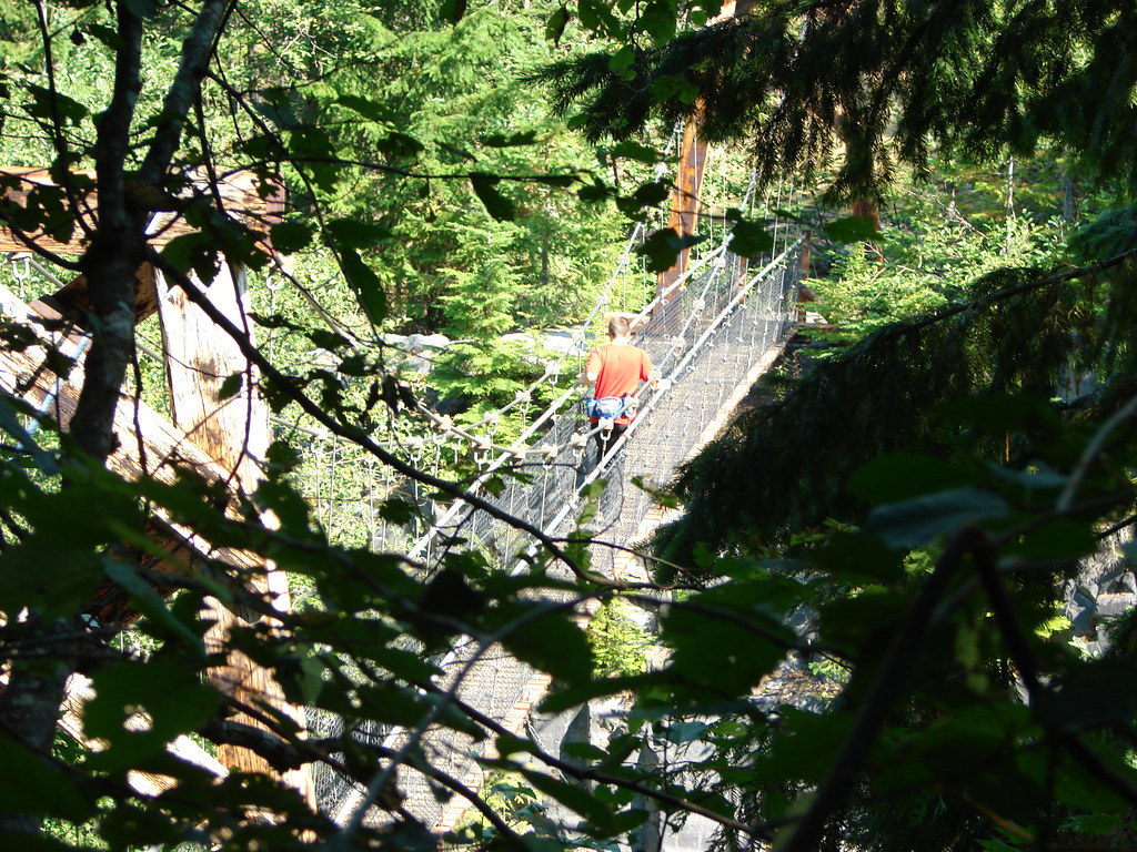 Suspension Bridge over Lava Canyon
