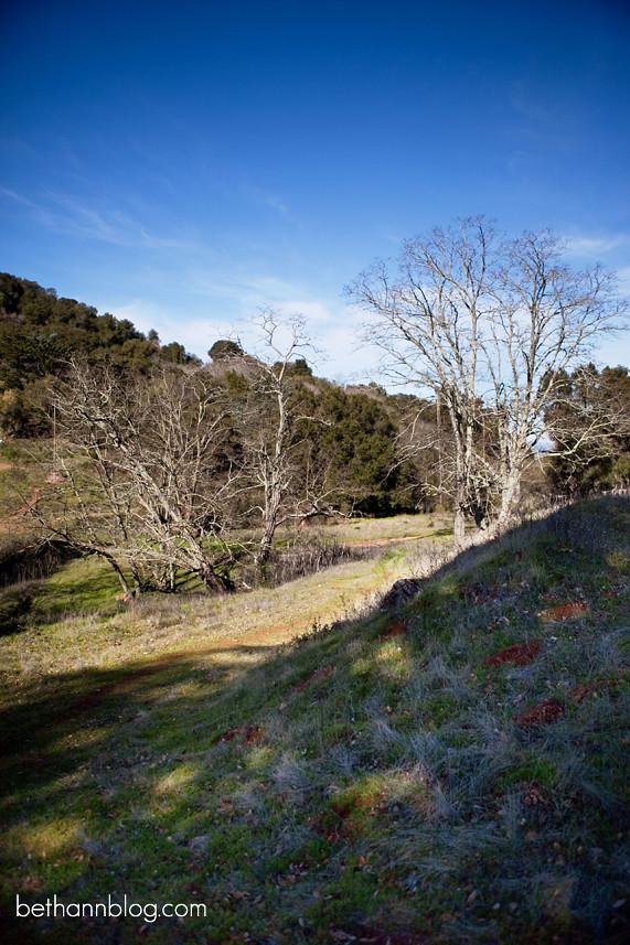 almaden quicksilver park san jose california