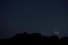 Comet PanSTARRS over the Bayou