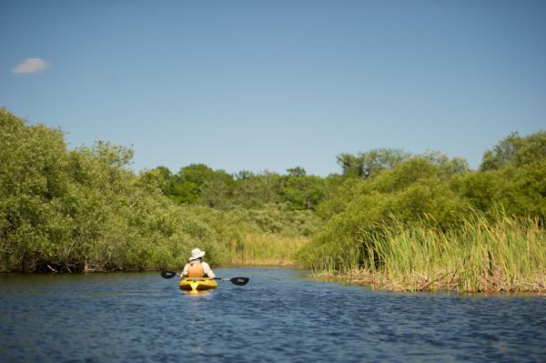 RYALE_Everglades-067