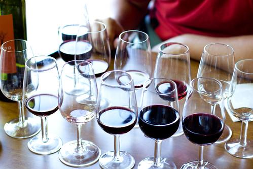 Cata en Vines of Mendoza