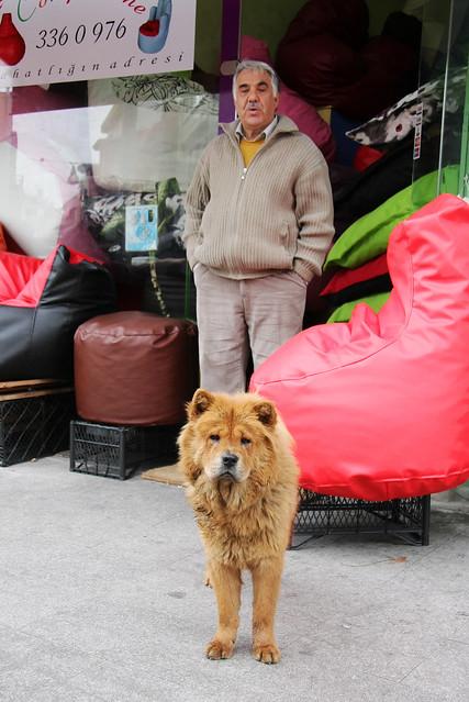 A dog and a man in Kadikoy, Istanbul, Turkey カドゥキョイ、犬とおじさん