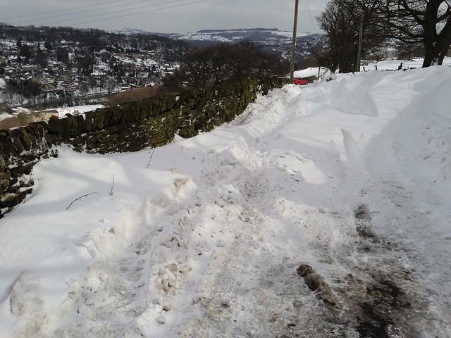Snowdrifts II