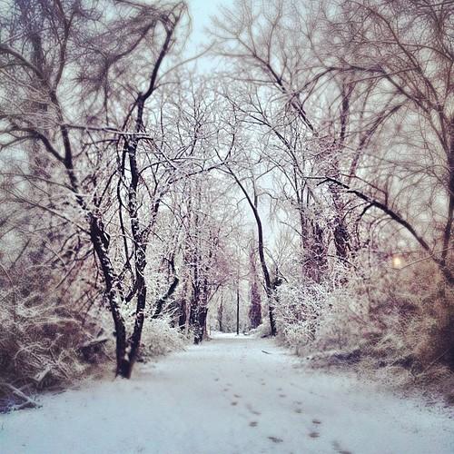 OMG!  snow!