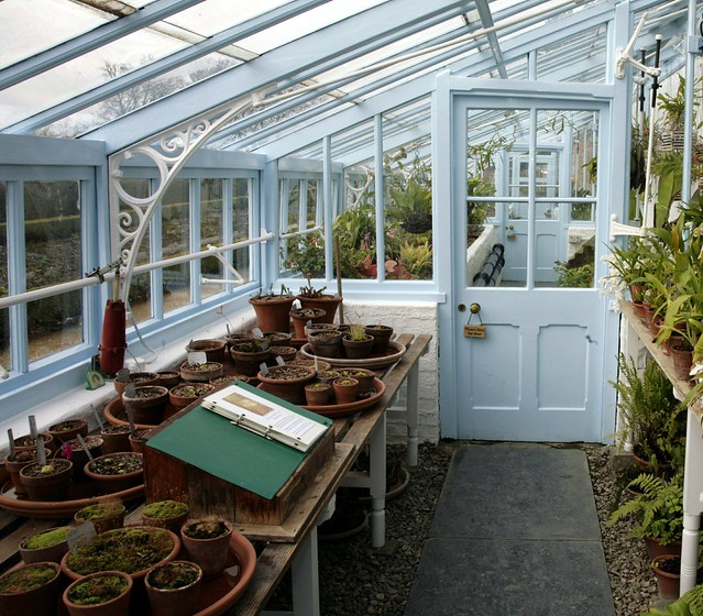 Gardens - Glasshouses, Greenhouses, Wintergardens