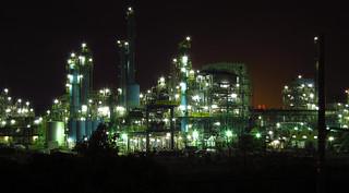 20130327_plant