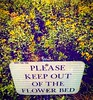 """No sleeping in this bed. """"Keep off"""" sign, Effingham rest stop, Interstate 57 northbound side. #southernil #soill #southernillinois #effingham #interstate #reststop #flowers #signs #highways #ontheroad #i57"""