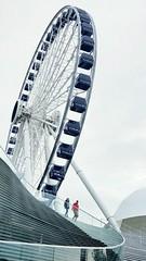 The Centennial Wheel at Navy Pier