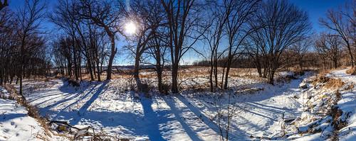 trees winter sky panorama sun snow landscape kansas prairie konzaprairie