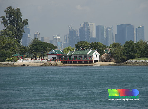 Kusu Island only minutes from the main business district on the mainland